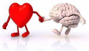 Volg je hart maar neem je hersenen mee