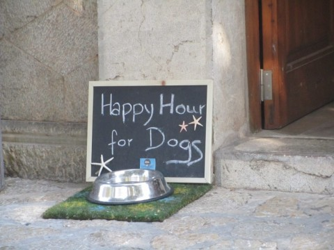 Mallorca sept 2014  (151)