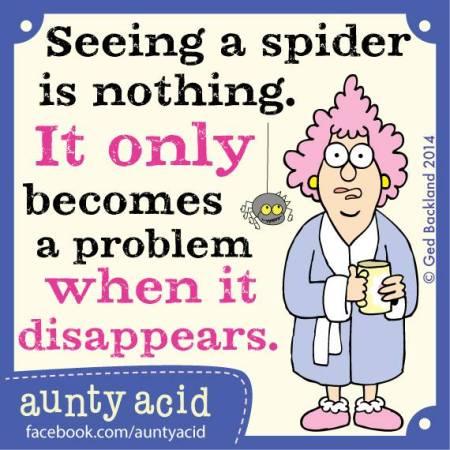 Aunty Acid-Spin-week 48