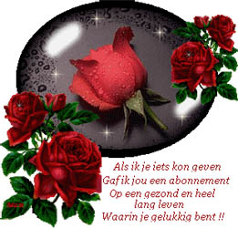 rozen-met-tekst