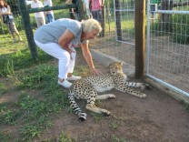 25-02-2017-cheeta-farm-41-custom